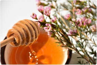Manuka honey fights infection in surgical dressings